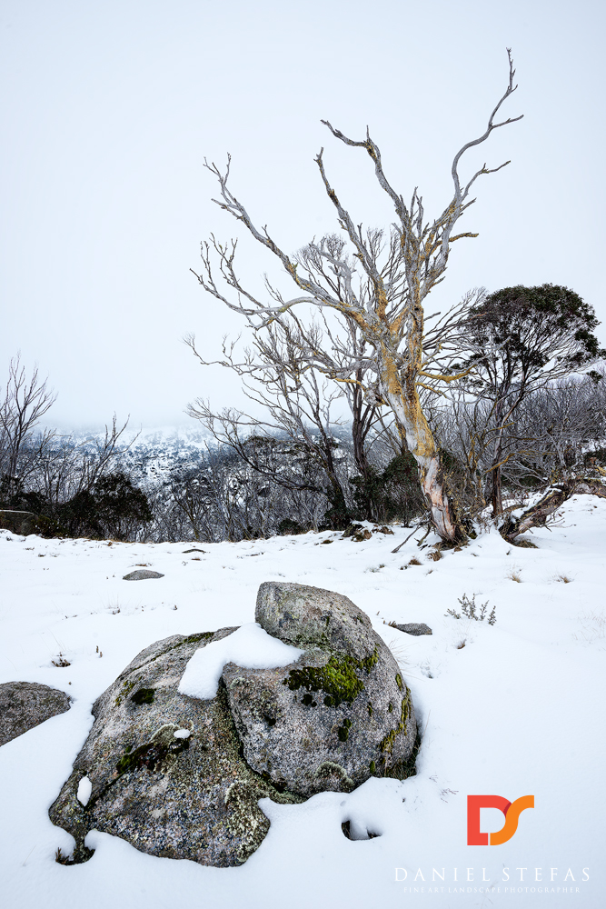 Boulder-Cold-Thredbo-NSW