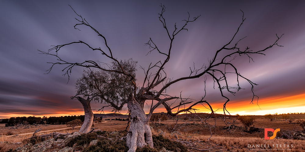 Last-One-Standing-Cooma-NSW