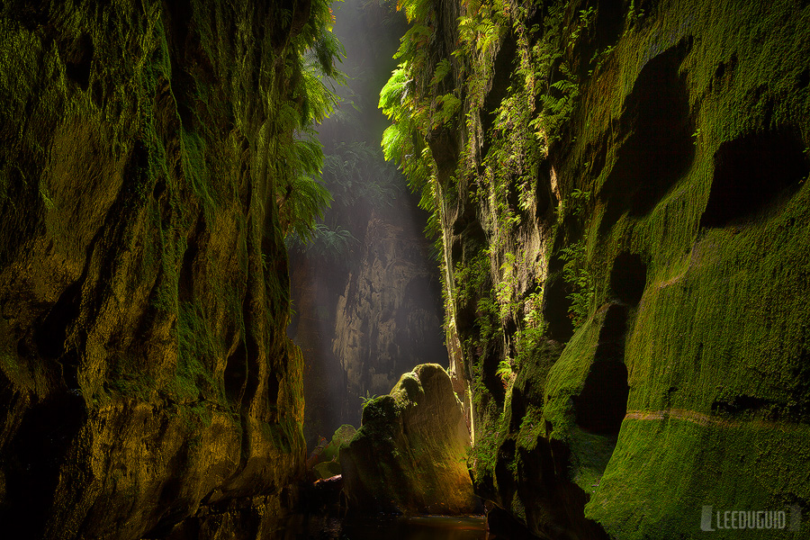 Claustral-Canyon-Blue-Mountains-National-Park-Australia-11129861