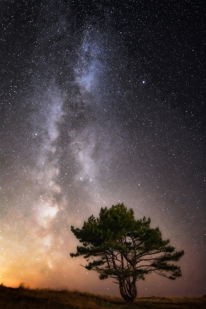 You might have seen this tree a couple of times before, but never before have I managed to extract so much detail from the night sky. In the background on the horizon there's a good deal of light pollution coming from the outskirts of the town of Den Helder in the northwestern Netherlands, although it isn't that visible to the naked eye. Nor is the Milky Way for that matter. When you have a good idea of where our galaxy rises out of the horizon, there's something to work on your composition with. I used 'short' 15 second exposures to pinpoint the exact location of where I wanted the tree and the Milky Way in the picture. The foreground is actually lightpainted by a large lighthouse behind me. While that diminished the contrast in the sky a little, the foreground went from a dark silhouette to a fairly detailed subject in spite of the gale force winds that haunted the plains that night. This image isn't stacked in DeepSkyStacker, but is instead raw converted in DxO Optics Pro 8. The premier noise reduction capabillities within this piece of software are, if you pardon the pun, stellar. 'The Dark Rift' was captured under the stars of Den Helder, the Netherlands, with the D7100 at 14mm. f/2.8 | 25s | ISO6400