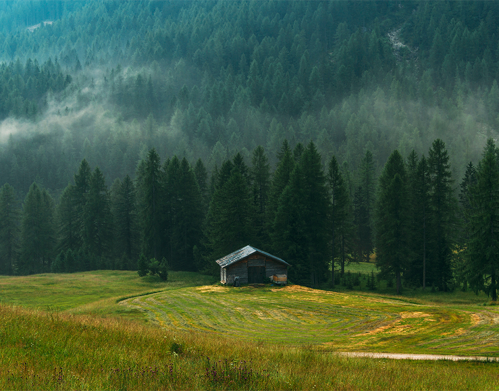 A lonely cottage in the misty and foggy forest just after the storm. Photograph was taken at Corvara in Dolomites mountain range, Italy