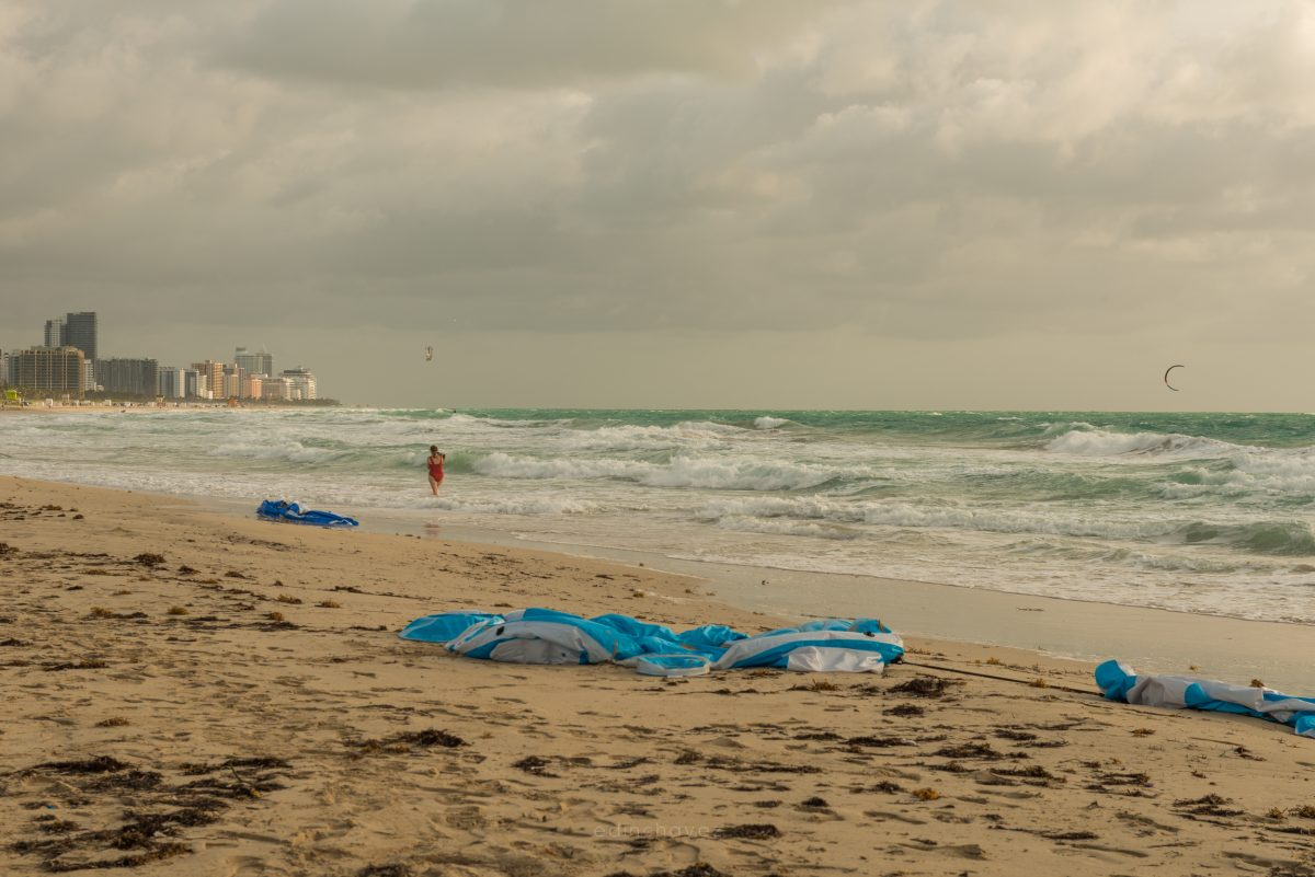 Miami Beach Trash (198 of 238)-1