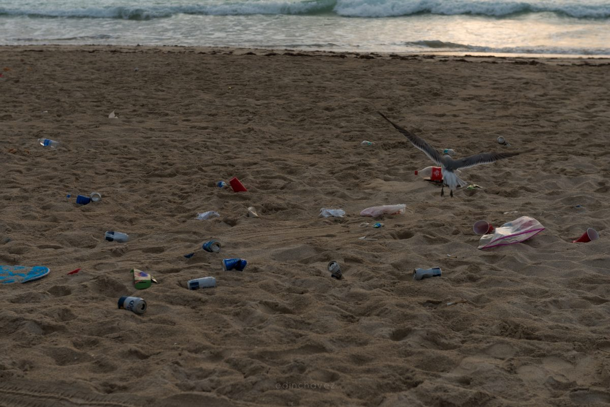 Miami Beach Trash (76 of 238)-1